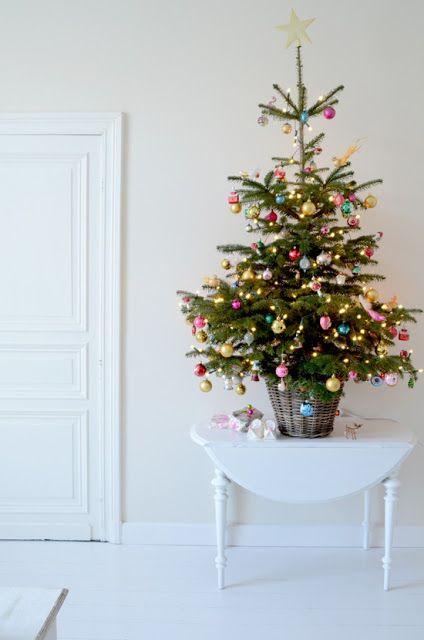 Živý vánoční stromek v květináči ozdobený barevnými koulemi. Stromek je položen na stolku.