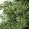 Detailní fotka 3D jehličí borovice. Větvičky mají přirozeně zelenou barvu a dokonalý tvar borovicového jehličí.