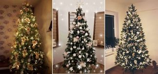 Ozdobené vánoční stromky