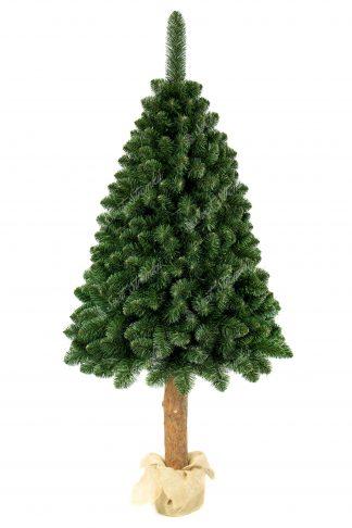 Hustá koruna vánočního stromku postavená na dřevěném pařezy. Větvičky stromku jsou přirozeně zelené barvy. Cely stromeček je postaven na betonovém podstavci zabaleném pytlovinou.
