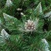 Detailní fotka větviček umělého vánočního stromku. Do špice zastřižené větvičky jsou zbarveny do bílé barvy a tak imitují sníh. Uprostřed fotky je krásná borová šiška zabarvena do stříbrná.