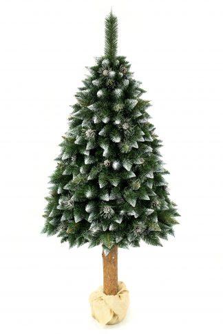 Umělý vánoční stromek stojí na cca 60 cm vysokém dřevěném pařezy. Ten je zalitý v betonu a pro krásnější vzhled je omotaný pytlovinou. Koruna stromu ma špičaté konečky větviček zabarvené bílou barvou. Stromek je ozdoben stříbrnými borovými šiškami.