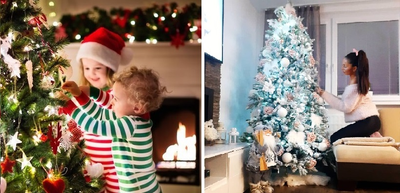 Kdy postavit vánoční stromek?