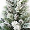 Zasněžené jehličí bílého vánočního stromku Borovice Bílá