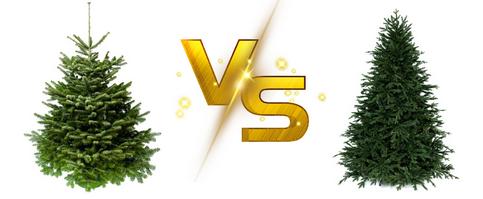 Živý vánoční stromeček versus umělý stromek
