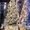 vánoční stromek Borovice Bílá 210cm