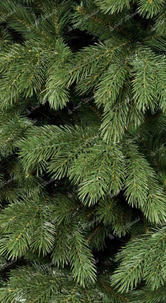 Vánoční stromek 3D Borovice Himalájká, detail konárku