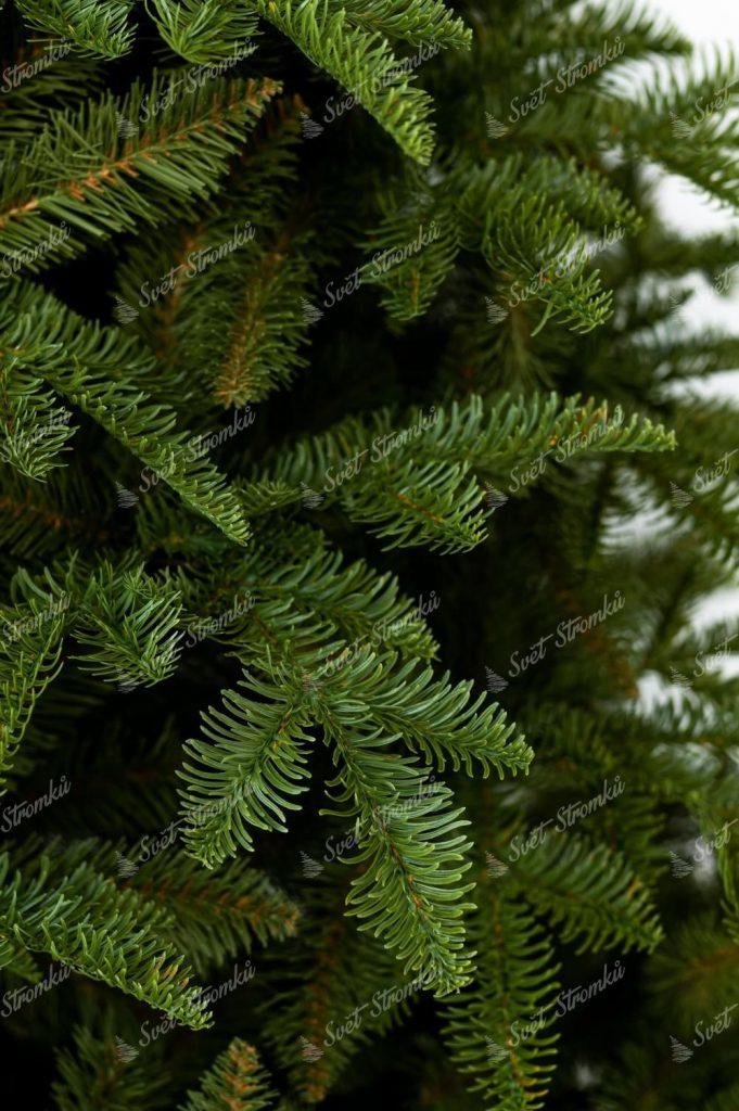 Vánoční stromek 3D Jedle Kavkažská
